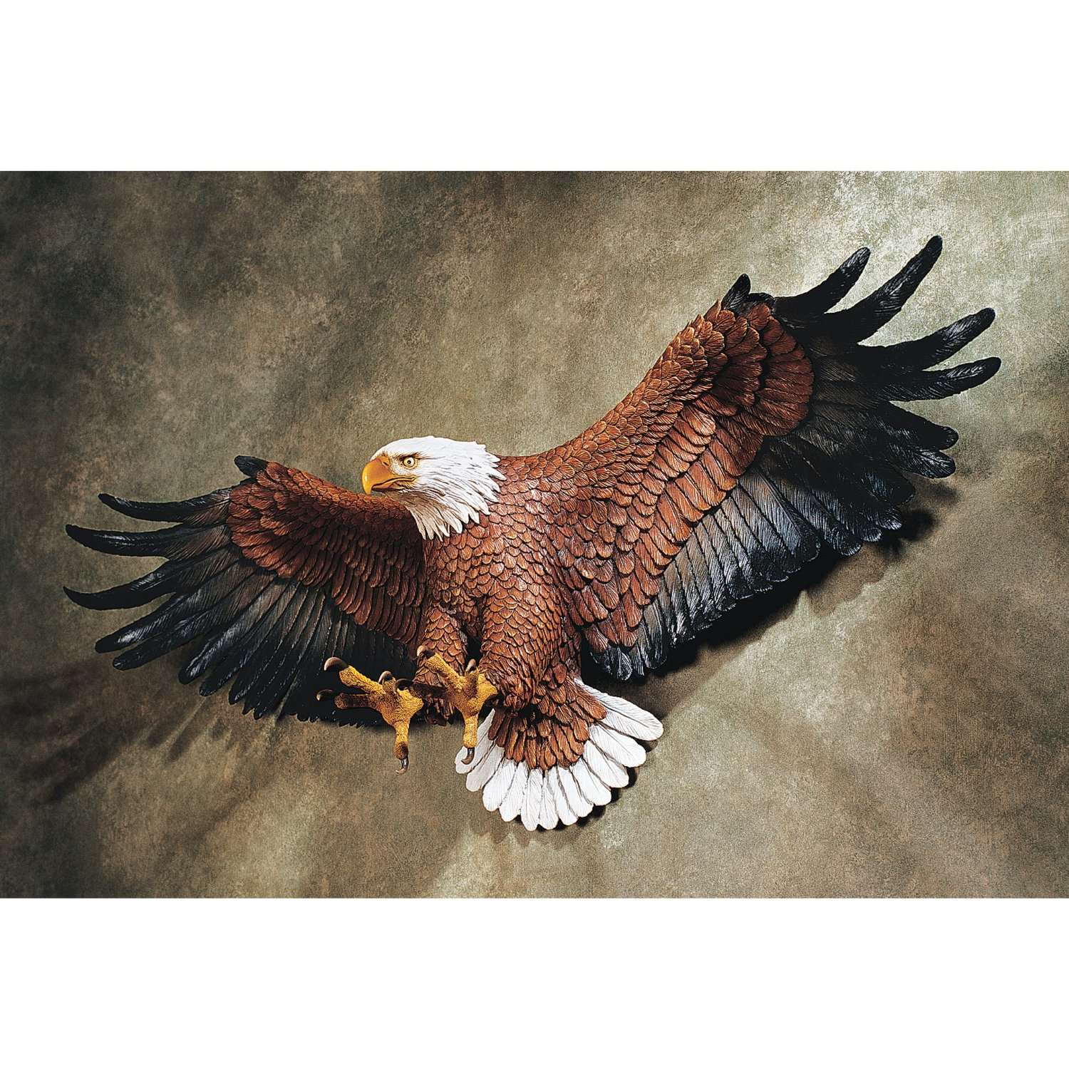 Eagle, Wall, TheBroCave, America
